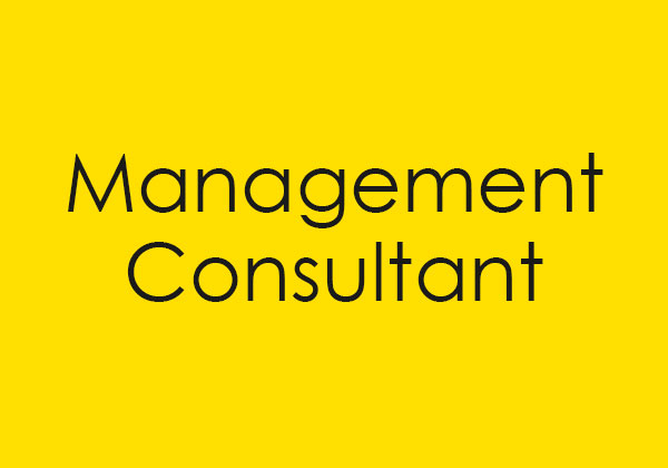 Link to Management Consultant site.