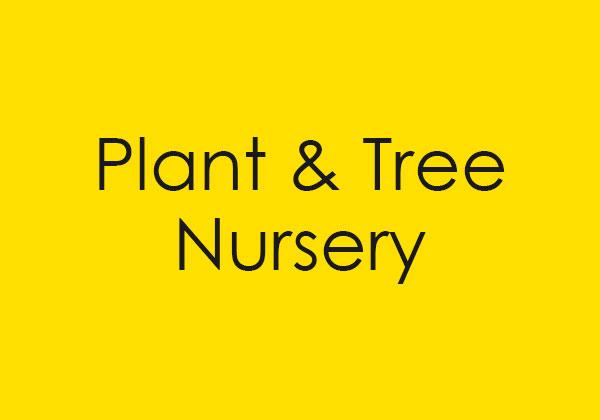 Link to Plant & Tree Nursery site.